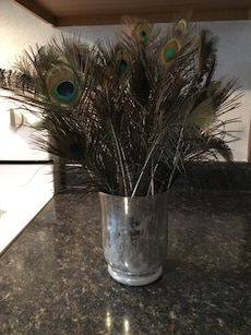 Peacock feathers in mercury glass vase