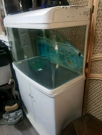 Curved Glass fish aquarium comes with filter pump  Calgary, T3G 5C8
