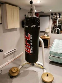 Heavy Bag & Speedbag Stand with UFC 100lbs bag
