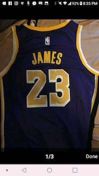Lebron Purple Lakers jersey  Nashville, 37013
