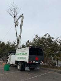Forestry truck