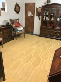 Large yellow area rug Ocala, 34475