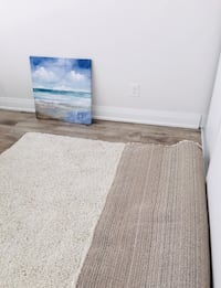 New- Shag Off-White 5 ft. 3-inch x 7 ft. 5-inch Rug Toronto, M8Y 0B6