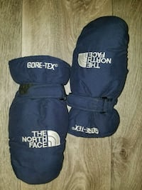 The North Face Gore-Tex Mitts Quinte West, K8V