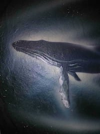 Whale picture on slate
