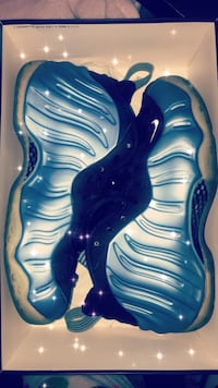 Nike Air Foamposite One Paterson, 07522