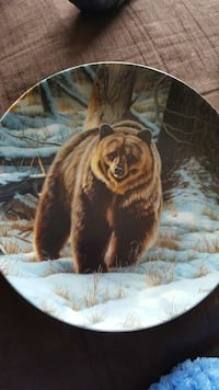 grizzly bear print decorative plate Mount Angel, 97362