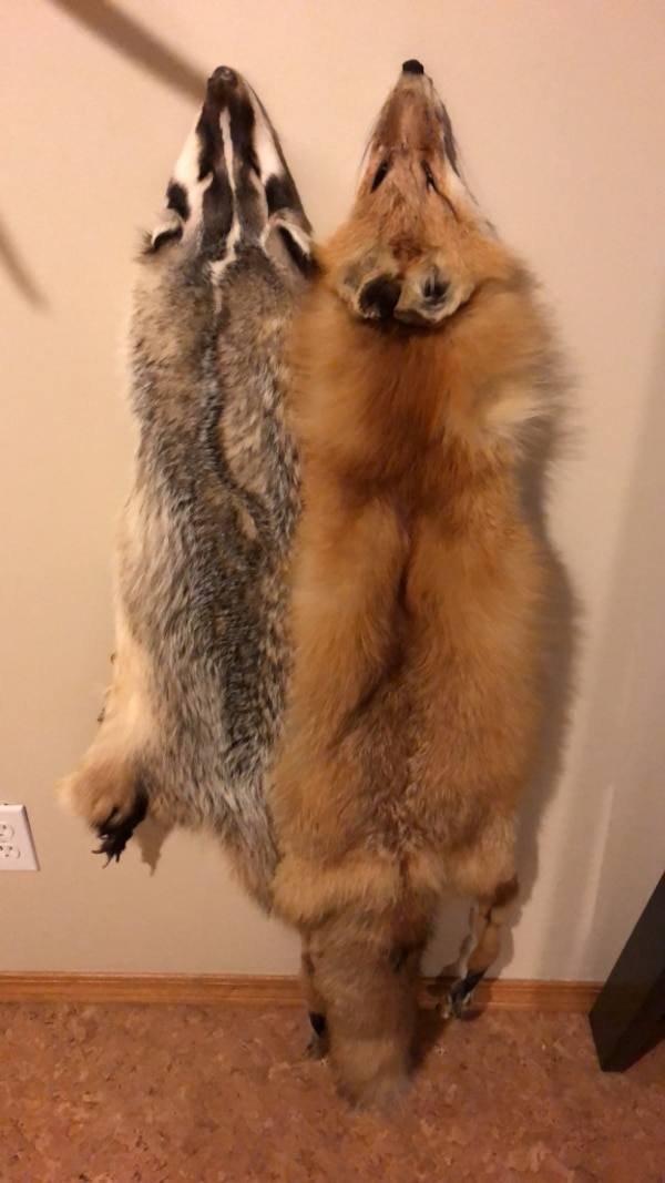 Badger and fox pelt. Together or separate