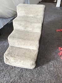 Dog or Cat Stairs Denver, 80203