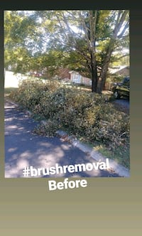 Brush removal at $50 a pickup load free estimates Minneapolis