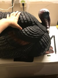 Turkey decoy Purcellville, 20132