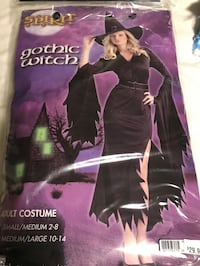 Halloween costume - witch size M Toronto, M9R 1W1
