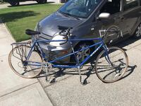 Tandem Road Bicycle 2282 mi