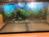 90 gallon aquarium tank Chestermere, T1X 1H2