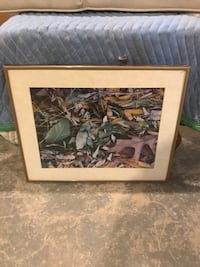 brown wooden framed painting of green leaf trees Livingston, 07039