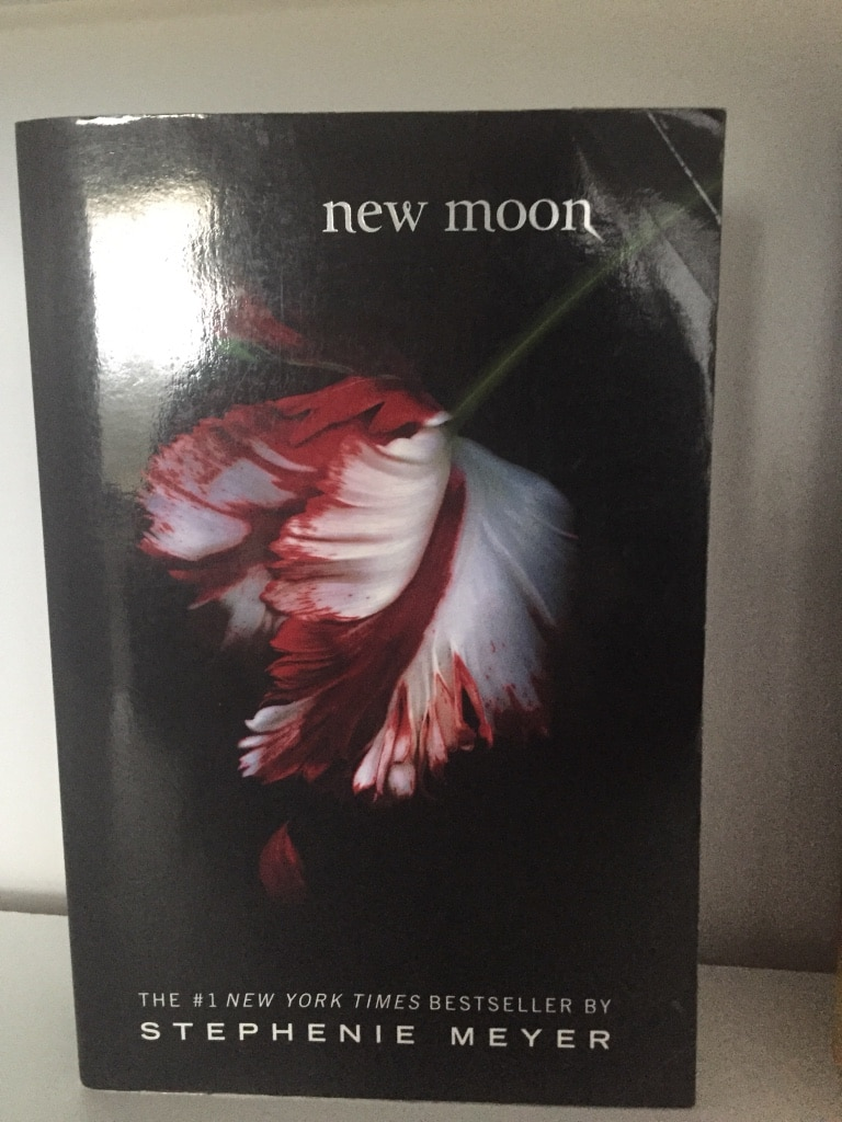 The Book New Moon For