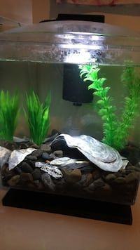 2.5 gallon fish tank. Ashburn, 20148