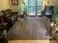 FREE Large Area rug **NO PETS, KIDS OR SMOKING** Burnaby, V3N 4M7