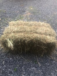 Orchard grass mix hay Woodstock, 22664