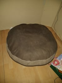 Dog bed, collar and muzzle