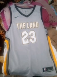 LeBron James xl swingman jersey Brampton, L6P