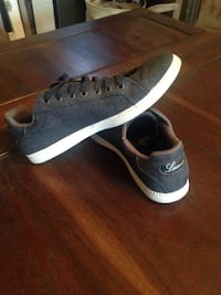 Pair of dark blue Lacoste low tops