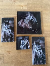 Horse Canvas Photos for Wall or Decor Kitchener