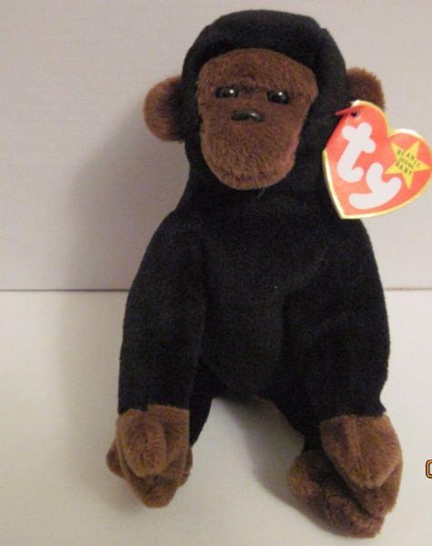 1996 Congo Beanie Baby with Case