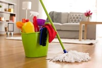 House cleaning $20hr over 30 yrs exp London, N5Y 1V4