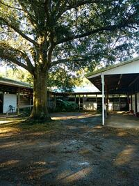 Stalls for rent. 1 mile from horse park Ocala