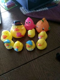 Ducks and more Newville, 17241