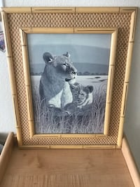 Lion picture in bamboo glass frame