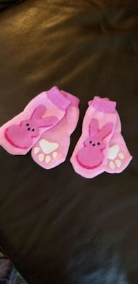 In Hollister- Small Dog Socks - One 4-piece set Hollister, 95023