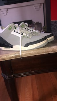 Air Jordan 3 Retro Chlorophyll(BRAND NEW)  Purcellville, 20132