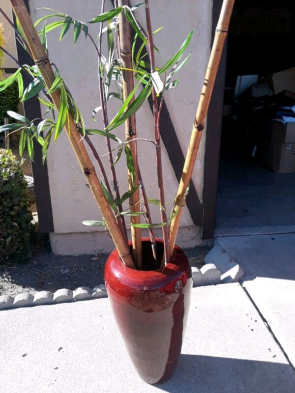 Vase With Bamboo Sticks