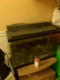 Small tank with light ,all works with 2 small fish Port Moody, V3H 3V8