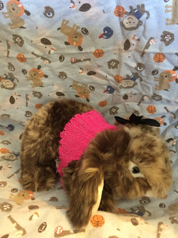 Brown plush toy rabbit bunny 046be95b-06c1-4a37-9987-def6b9c176a3