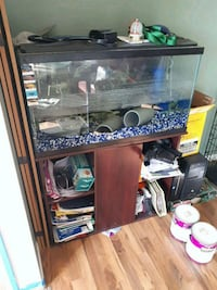 45 gallon fish tank and stand Ingersoll, N5C 1H9