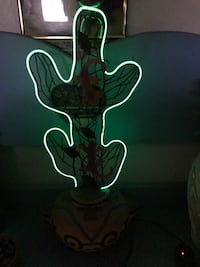 green cactus Neon light Harpers Ferry, 25425