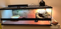 Large exo Tera tank for reptiles and Dubai roach colony Lafayette, 70508