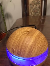 CUTE Diffuser (YOU CAN PUT SCENTS) air