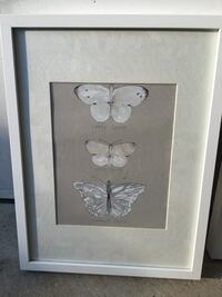 white wooden frame butterfly illustration 尤金, 97401