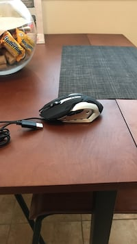 gaming mouse Harrisburg, 17110