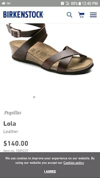 unpaired black and brown leather sandals Chicago, 60609
