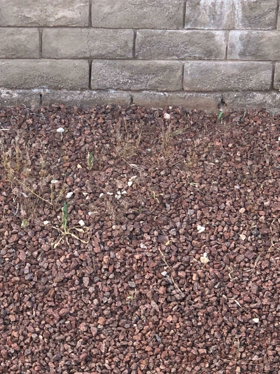 Photo 1200 SQUARE FEET OF MIXED RED ROCK
