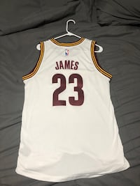 Lebron James jersey  Youngstown, 44512