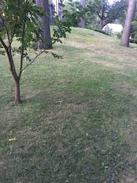 Lawn mowing New Hyde Park