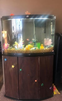 36 gallon Fish tank with Stand and Full Set