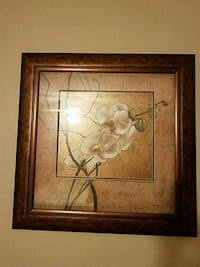 brown wooden framed painting of white petaled flow Jamestown, 27282
