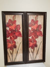 Pair of LARGE, FRAMED RED FLOWER (prefer to sell as pair) - firm price Arlington, 22204